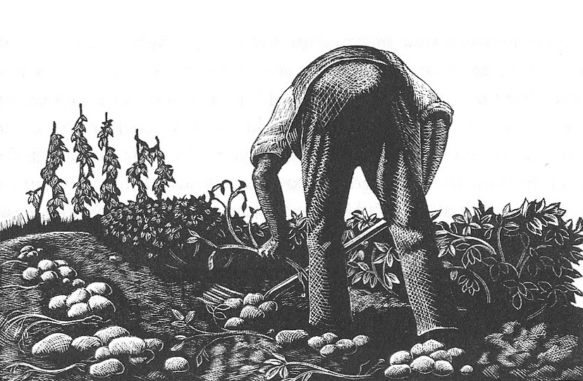 wood engraving by Claire Leighton, courtesy of the artist's estate